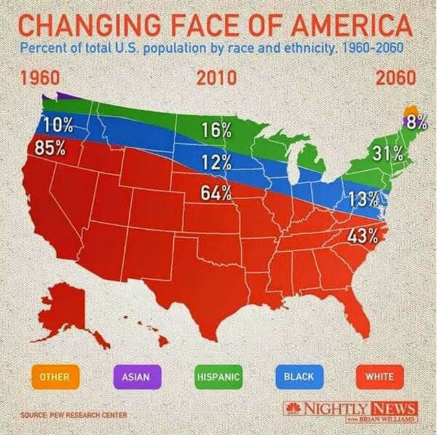Changing Face of America Data Visualization