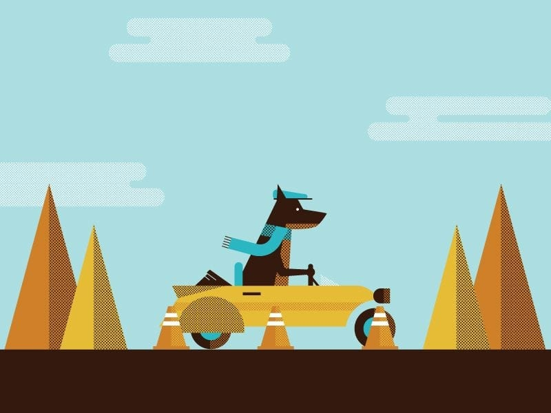 mint infographic series thumb with dog driving a car