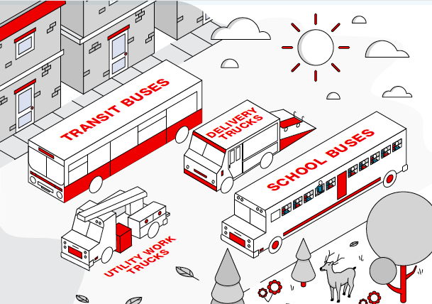 Infographic design example showing trucks and buses