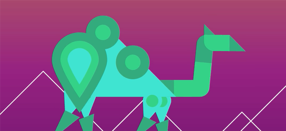 Camel illustration from motion graphics designer showreel
