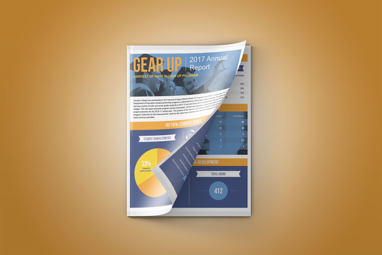 RGI Corporation Annual Report Infographic