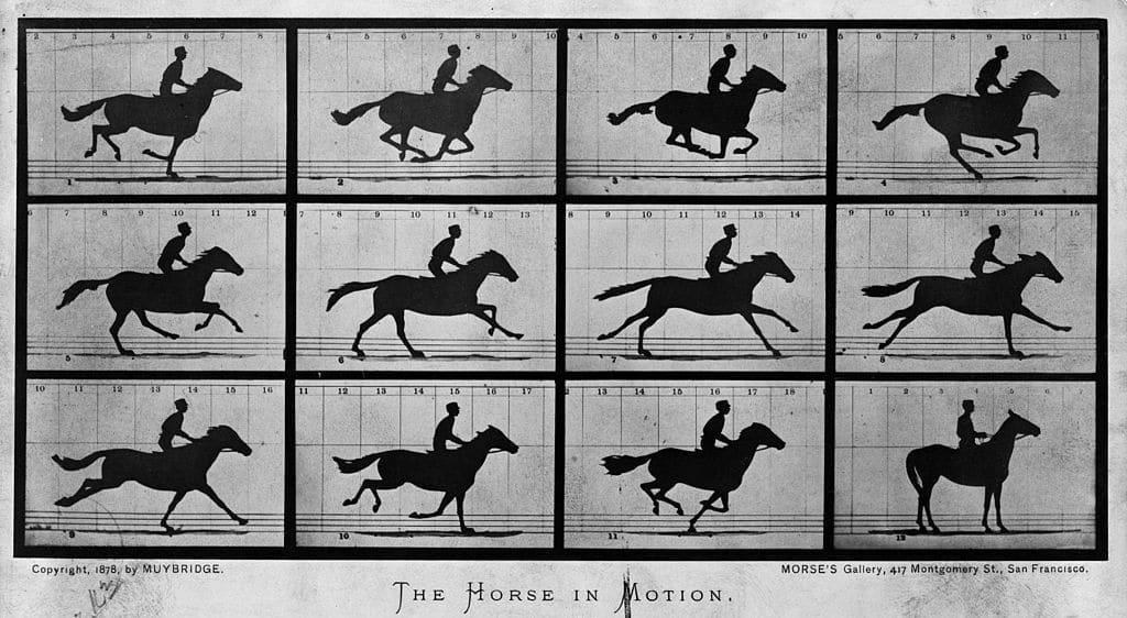 Muybridge first movie art of storytelling