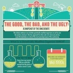 Infographic_on_GMOs