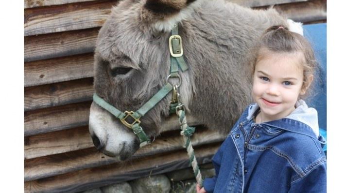 Violet Koppany-Fay's Hop-a-thon Fundraiser Campaign