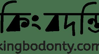 Kingbodonty-Logo