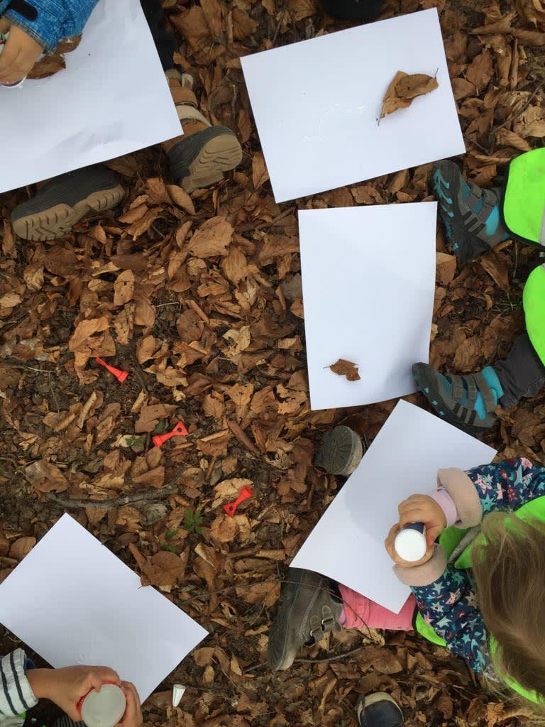 Wald- und Wiesen Bilder gestalten