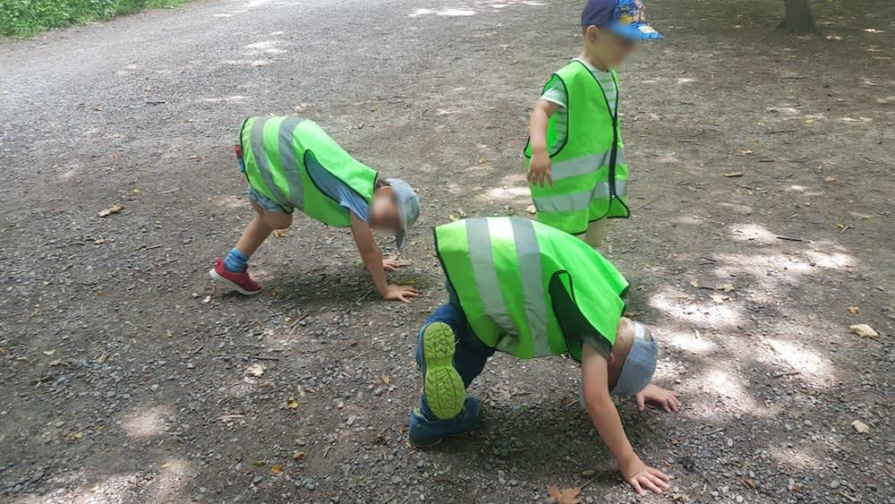 kinderkrippe und waldkinderkrippe bluemli - zirkus yoga