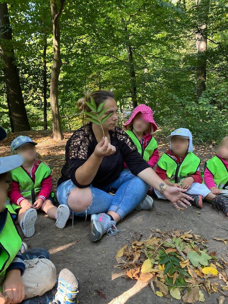 blätter erkennen - Kinderkrippe + Waldkinderkrippe Blüemli in Zürich