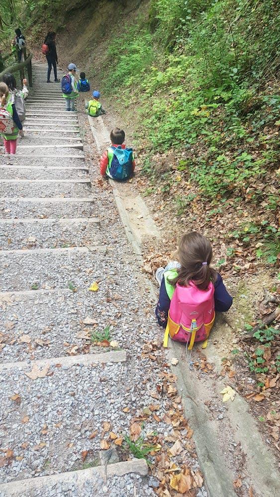 waldrutsche - Kinderkrippe + Waldkinderkrippe Blüemli in Zürich