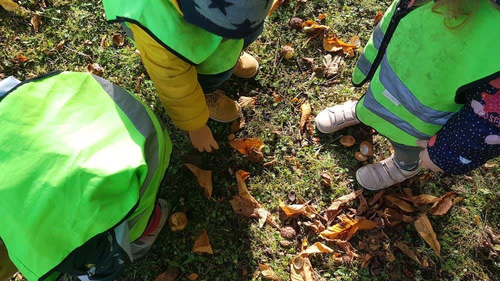 wir suchen marroni - Kinderkrippe + Waldkinderkrippe Blüemli in Zürich