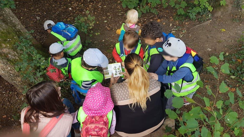 welche bäume gibt es im wald - Kinderkrippe + Waldkinderkrippe Blüemli in Zürich