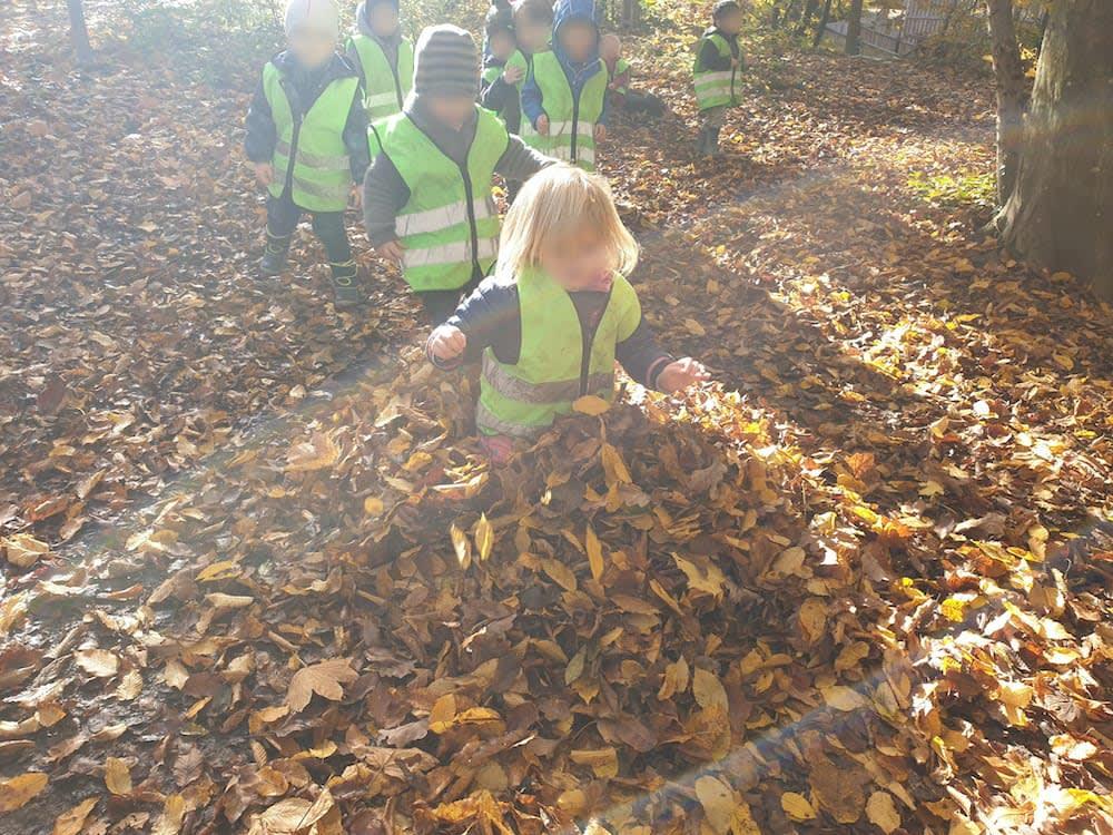 Herbstblätter - Kinderkrippe-Waldkinderkrippe-Blüemli-in-Zürich