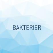Vannanalyse Bakteriologisk