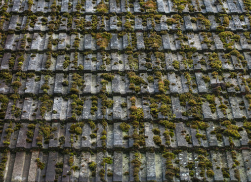 roof tile needs a clean
