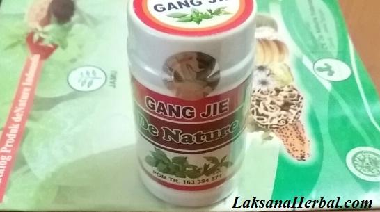 Gangjie obat kutil kelamin