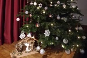 2020-12-22-advents-und-weihnachtszeit-im-kolpinghaus-18