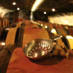 O expert Jean Claude Cara ministra aula de vinho interativa