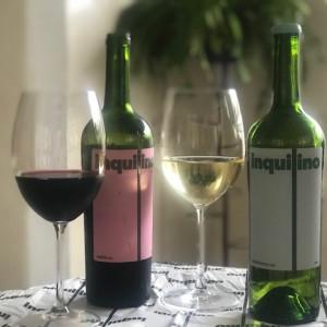 Inquilino Vinhos: E-commerce prioriza vinho brasileiro