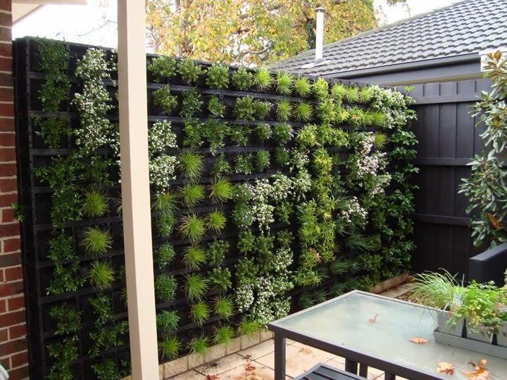 Conheça as vantagens da manta bidim para construir um jardim vertical bonito e saudável