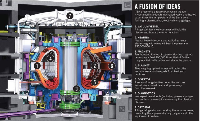 Внутреннее строение ITER