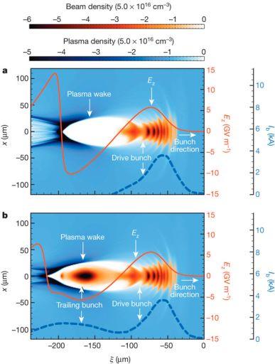 Схема плазменного кильватерного ускорения. Сверху — при отсутствии пучка ускоряемых электронов, снизу — при его наличии (Trailing bunch). Оттенками синего передана плотность электронов в плазме. Кильватерная волна (Plasma wake) возбуждается электронным пучком — драйвером (Drive bunch), распространяющимся слева направо. Красной линией показано продольное электрическое поле на оси пучка, тёмно-синим пунктиром показано распределение плотности электронов там же.