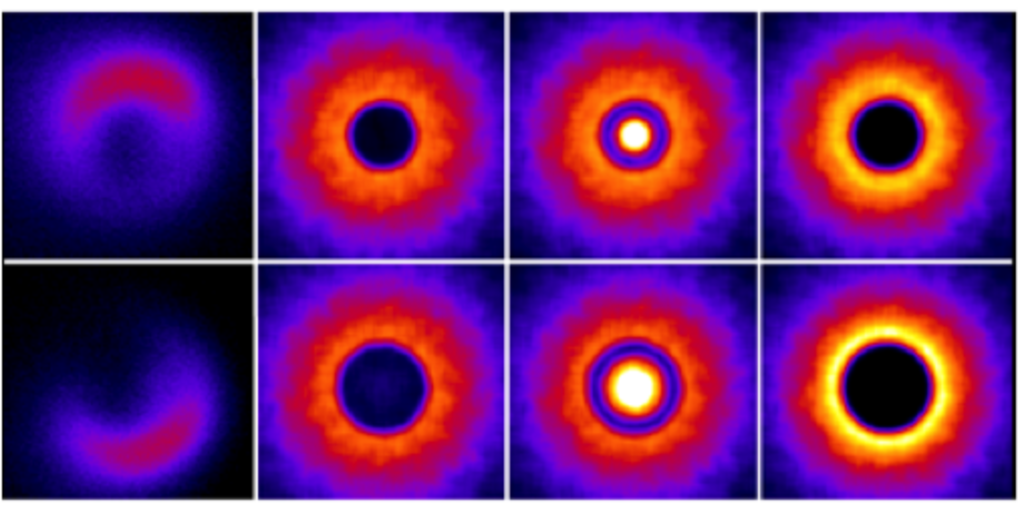 Снимки магнитного поля в разные моменты времени, полученные в работе
