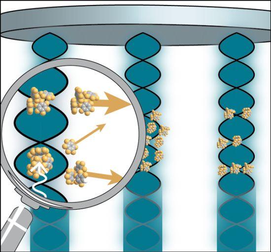 Схематическое изображение реализованной экспериментаторами техники.