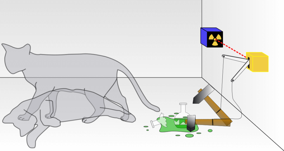 Без сомнений, самым известным объектом, находящемся в состоянии квантовой суперпозиции, является кот Шрёдингера, который и жив, и мёртв одновременно.