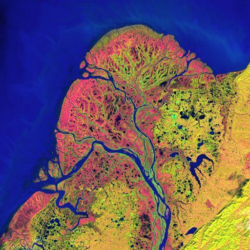 Дельта реки Юкон, Landsat 7, снято 22 сентября 2002 года