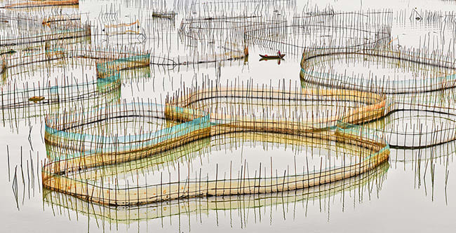 'Nets Study 5, China' - David Burdeny