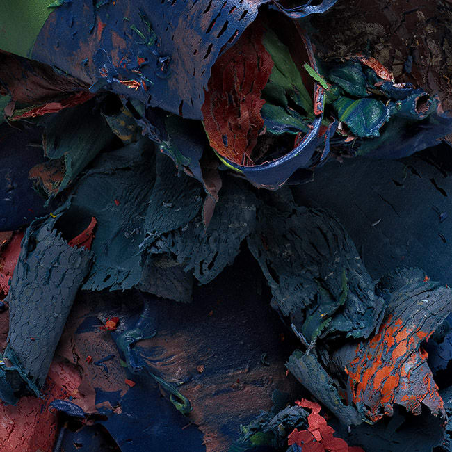 Judy D. Shane- The Painted Photograph: Remnants - #474 v3