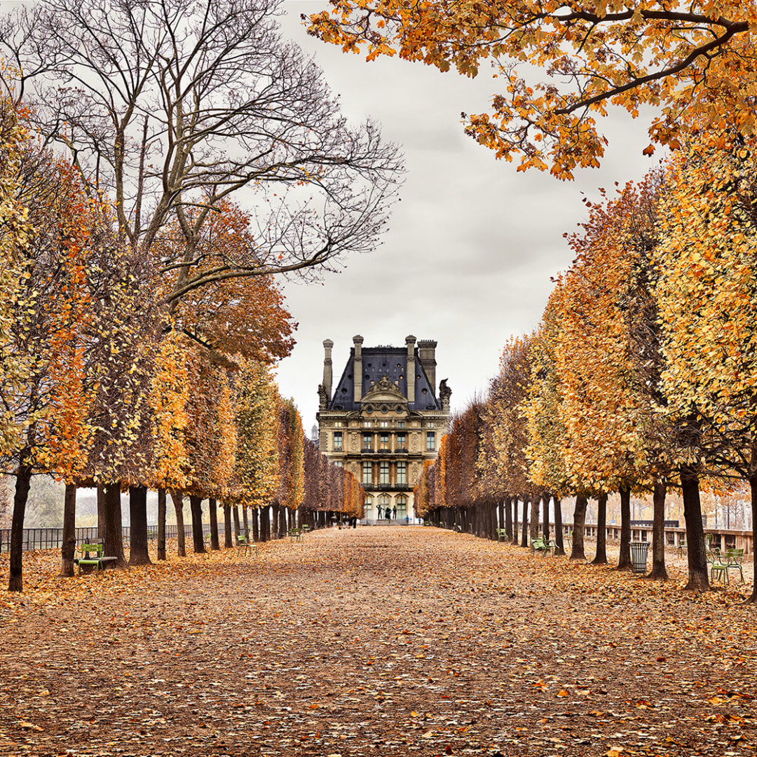 'Red Leaves, Paris, FR' - David Burdeny