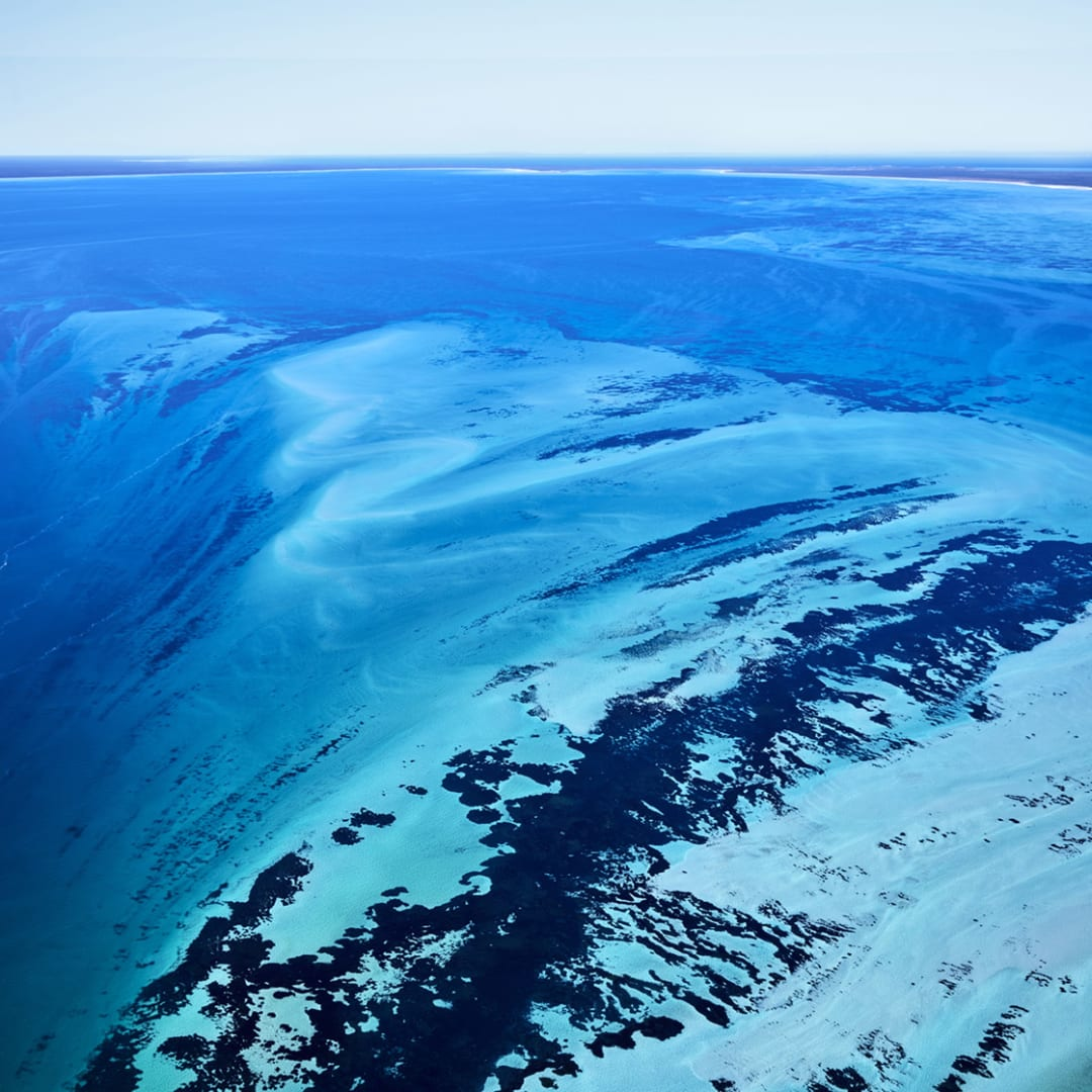 Shark Bay (Square 2), Australia, 2016