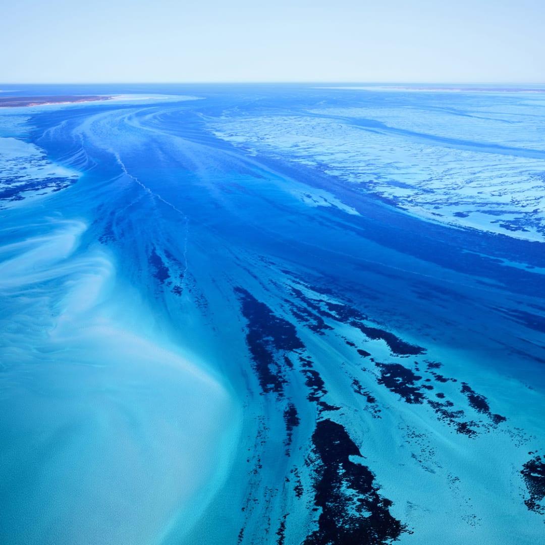 Shark Bay (Square 1), Australia, 2016