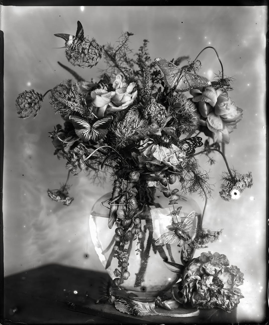 What Came In With The Flowers - Whitney Lewis-Smith