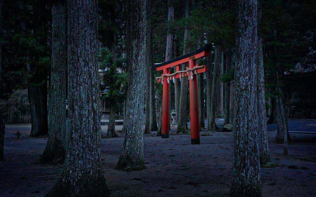 Torii Gate, Koyasan, Japan, 2012