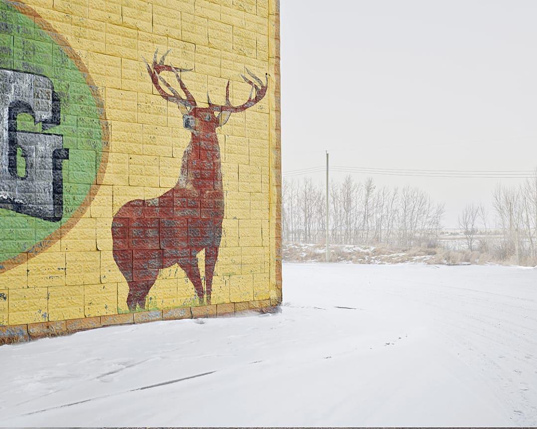 David Burdeny- Deer Crossing, Alberta, CA, 2020