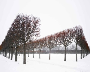 David Burdeny – Winter Red, Pushkin, Russia, 2015