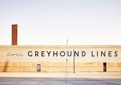 Philip Jarmain- Greyhound Lines