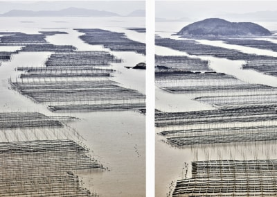Seaweed Farms (triptych), China, 2017