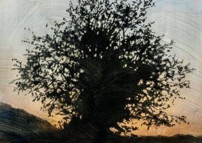 Stephen Hutchings – Tree #7