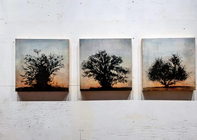 Tree grid, 3 panels (Family series) - Stephen Hutchings