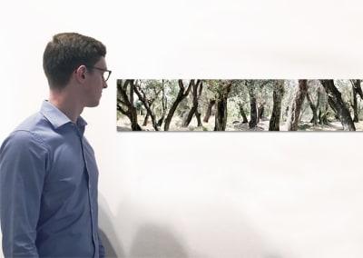 "Boscomare, 10"" x 78.5"", Installation - Georg Kuettinger"
