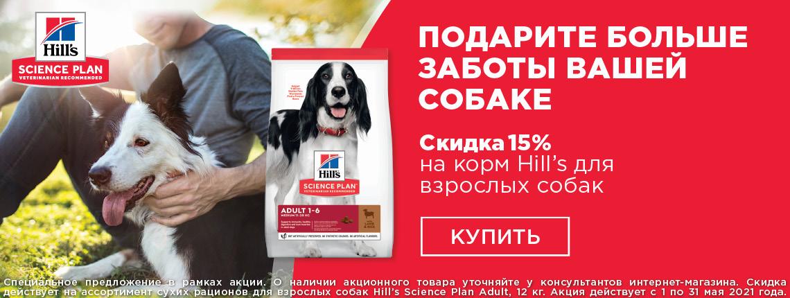 Base Dog, скидка 15%