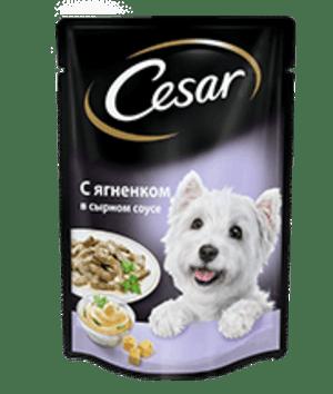 Cesar с ягненком в сырном соусе