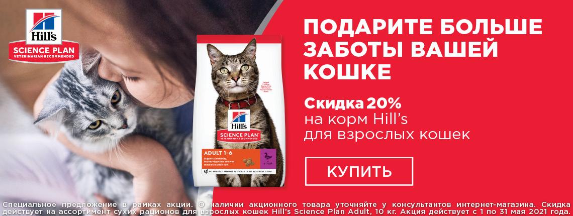 Base Cat, скидка 20%