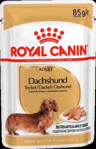 Royal Canin DACHSHUND ADULT (ПАШТЕТ) 0.085кг, Влажный корм для собак породы Такса старше 10 месяцев
