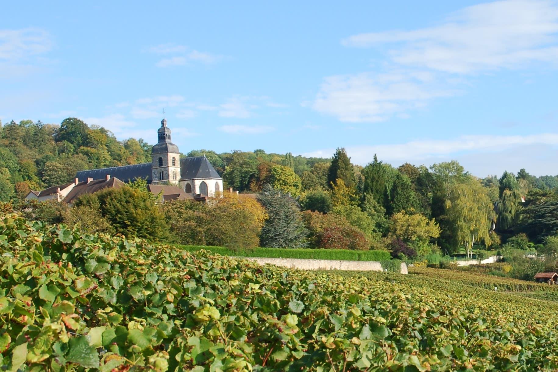 St Pierre abdij van Hautvillers