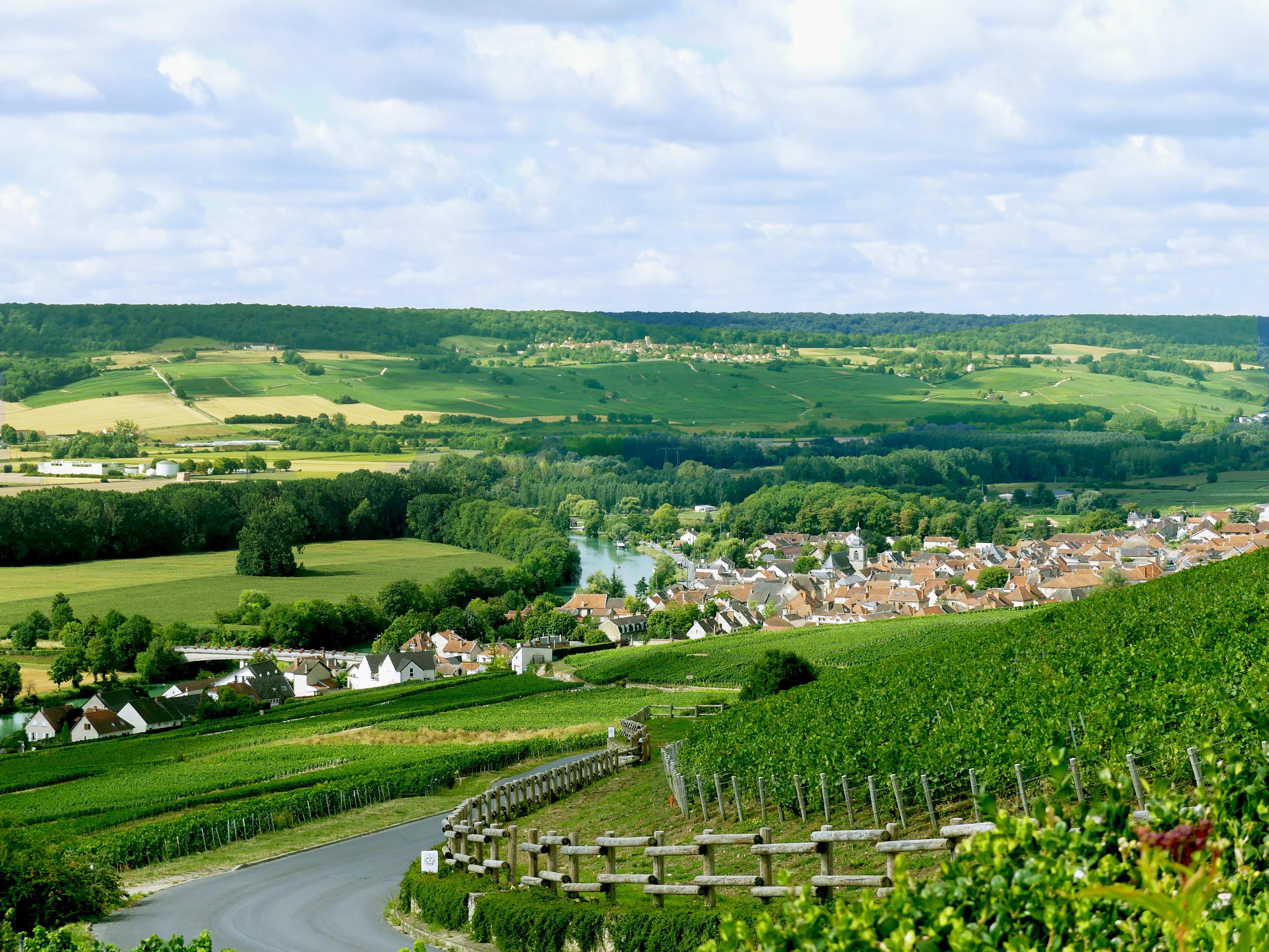 Hautvillers, zicht op Cumières en de Marne