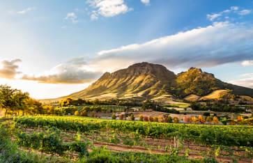 Stellenbosch, Südafrika